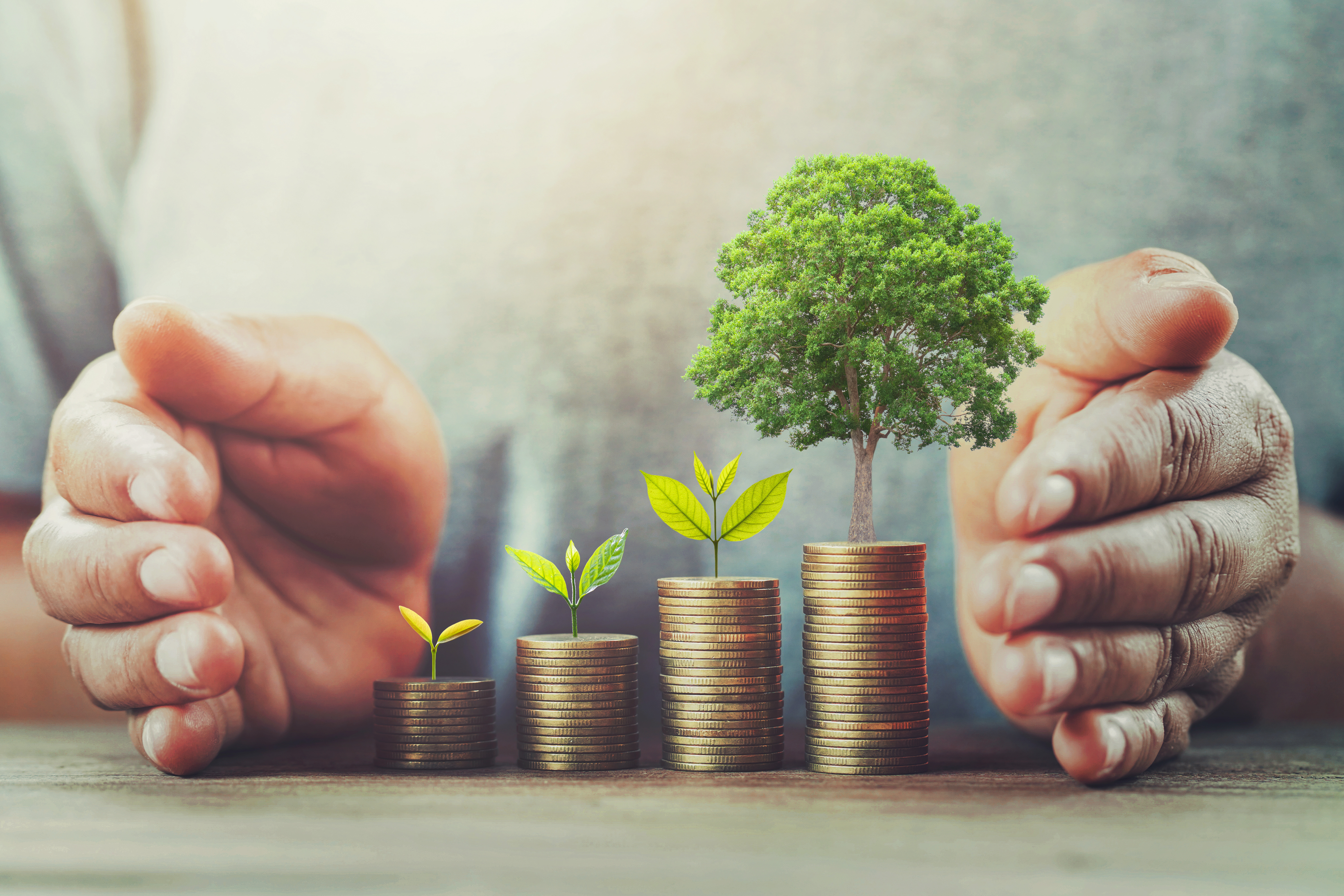 businessman protection money on table with tree. Earthworm Group concept