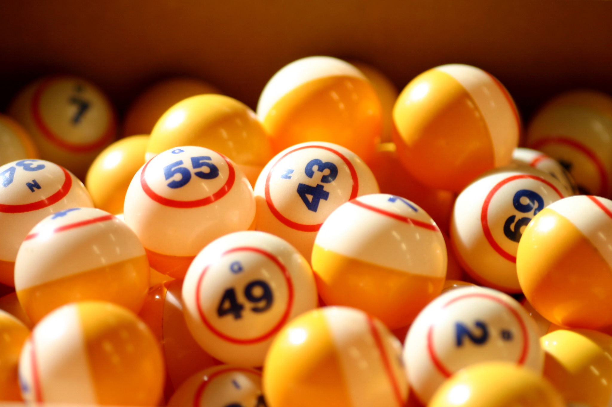 lottery business plan in india
