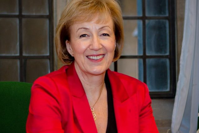 Andrea Leadsom no-deal Brexit
