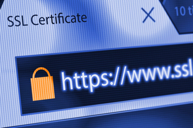 Close-up of a browser window showing lock icon during SSL connection, HTTPS concept